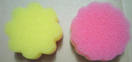 pondelion-sponge3.jpg